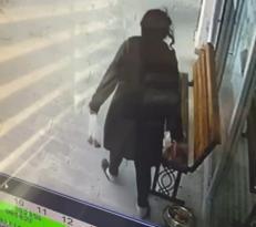 Mamam Hırsızı Kameralarda